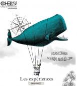 Cours commun du CHEL[s] : participation d'ICAR